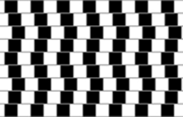 Cafe illusion